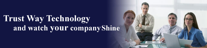 Trust Way Technology and watch your company shine